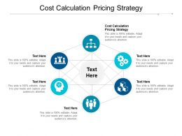 Cost Calculation Pricing Strategy Ppt Powerpoint Presentation Infographic Template Topics Cpb