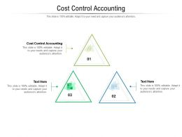 Cost Control Accounting Ppt Powerpoint Presentation Professional Graphics Pictures Cpb