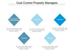 Cost Control Property Managers Ppt Powerpoint Presentation Pictures Templates Cpb