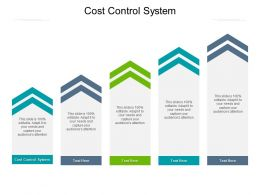 Cost Control System Ppt Powerpoint Presentation Gallery Example Topics Cpb