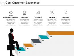 Cost Customer Experience Ppt Powerpoint Presentation Infographic Template Diagrams Cpb