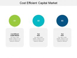 Cost Efficient Capital Market Ppt Powerpoint Presentation Styles Background Cpb