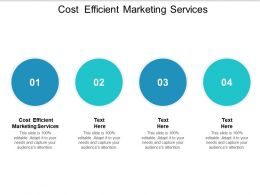 Cost Efficient Marketing Services Ppt Powerpoint Presentation Show Outfit Cpb