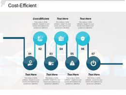 Cost Efficient Ppt Powerpoint Presentation Slides Sample Cpb