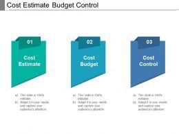 Cost Estimate Budget Control