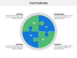 Cost Estimate Ppt Powerpoint Presentation File Outline Cpb