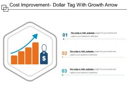 Cost Improvement Dollar Tag With Growth Arrow
