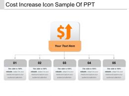 Cost Increase Icon Sample Of Ppt