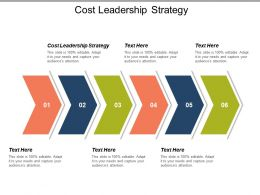 Cost Leadership Strategy Ppt Powerpoint Presentation Icon Topics Cpb