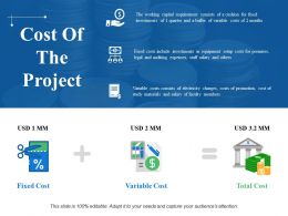 Cost Of The Project Powerpoint Slide Information