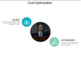 Cost Optimization Ppt Powerpoint Presentation Ideas Picture Cpb