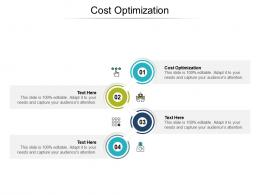 Cost Optimization Ppt Powerpoint Presentation Outline Example Cpb