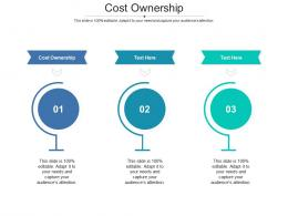 Cost Ownership Ppt PowerPoint Presentation Outline Styles Cpb