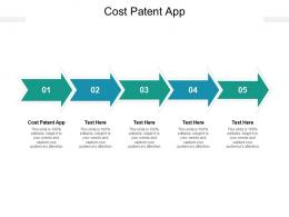 Cost Patent App Ppt Powerpoint Presentation Ideas Diagrams Cpb