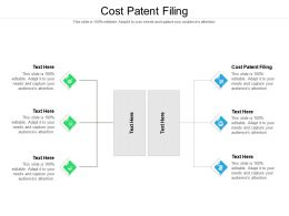 Cost Patent Filing Ppt Powerpoint Presentation Icon Visual Aids Cpb