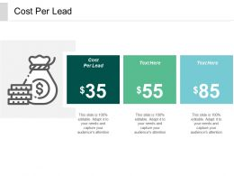 Cost Per Lead Ppt Powerpoint Presentation Gallery Background Images Cpb