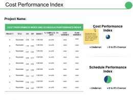 Cost Performance Index Ppt Infographic Template Themes