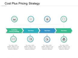 Cost Plus Pricing Strategy Ppt Powerpoint Presentation Infographics Objects Cpb