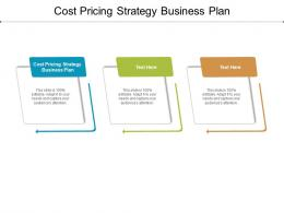 Cost Pricing Strategy Business Plan Ppt Powerpoint Presentation Model Graphics Template Cpb