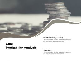 Cost Profitability Analysis Ppt Powerpoint Presentation Slides Styles Cpb