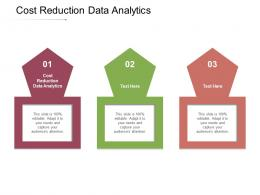 Cost Reduction Data Analytics Ppt Powerpoint Presentation Icon Portfolio Cpb