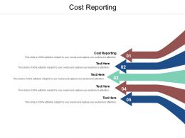 Cost Reporting Ppt Powerpoint Presentation Pictures Styles Cpb