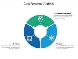 Cost Revenue Analysis Ppt Powerpoint Presentation File Graphic Tips Cpb