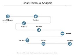 Cost Revenue Analysis Ppt Powerpoint Presentation Inspiration Example Cpb