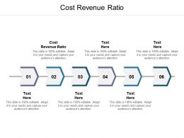 Cost Revenue Ratio Ppt Powerpoint Presentation Styles Deck Cpb