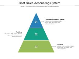 Cost Sales Accounting System Ppt Powerpoint Presentation File Pictures Cpb