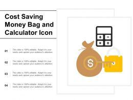 Cost Saving Money Bag And Calculator Icon