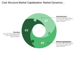 Cost Structure Market Capitalization Market Dynamics Channel Support