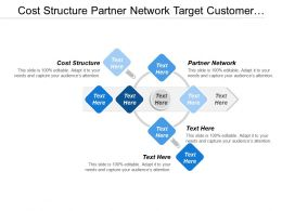 Cost Structure Partner Network Target Customer Formation Strategy