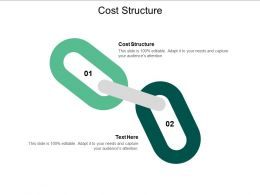 Cost Structure Ppt Powerpoint Presentation Infographic Template Background Cpb