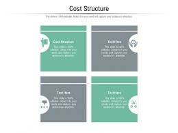 Cost Structure Ppt Powerpoint Presentation Model Master Slide Cpb