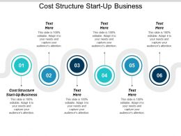 Cost Structure Start Up Business Ppt Powerpoint Presentation Gallery Model Cpb