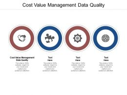 Cost Value Management Data Quality Ppt Powerpoint Presentation Styles Slide Cpb