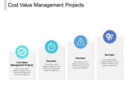 Cost Value Management Projects Ppt Powerpoint Presentation Files Cpb