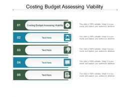 Costing Budget Assessing Viability Ppt Powerpoint Presentation Influencers Cpb