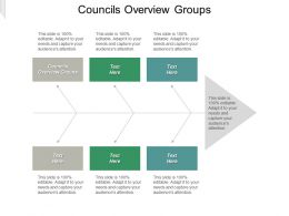 Councils Overview Groups Ppt Powerpoint Presentation File Slide Portrait Cpb