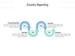 Country Reporting Ppt Powerpoint Presentation Model Example File Cpb