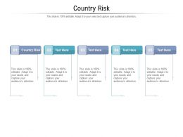 Country Risk Ppt Powerpoint Presentation Icon Guide Cpb