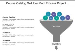 Course Catalog Self Identified Process Project Quality Assurance