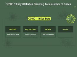 COVID 19 Key Statistics Showing Total Number Of Cases Ppt Powerpoint Presentation Outline Demonstration