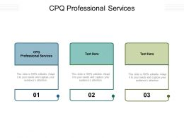 CPQ Professional Services Ppt Powerpoint Presentation Templates Cpb