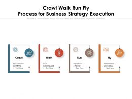 Crawl Walk Run Fly Process For Business Strategy Execution