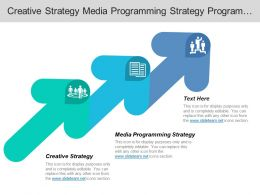 Creative Strategy Media Programming Strategy Program Implementation Effectiveness