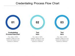 Credentialing Process Flow Chart Ppt Powerpoint Presentation Summary Master Slide Cpb