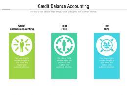 Credit Balance Accounting Ppt Powerpoint Presentation Portfolio Format Ideas Cpb