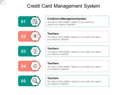 Credit Card Management System Ppt Powerpoint Presentation Model Smartart Cpb